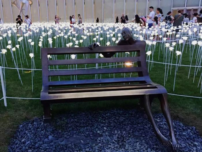 Flower Outdoors White roses BEIJING北京CHINA中国BEAUTY