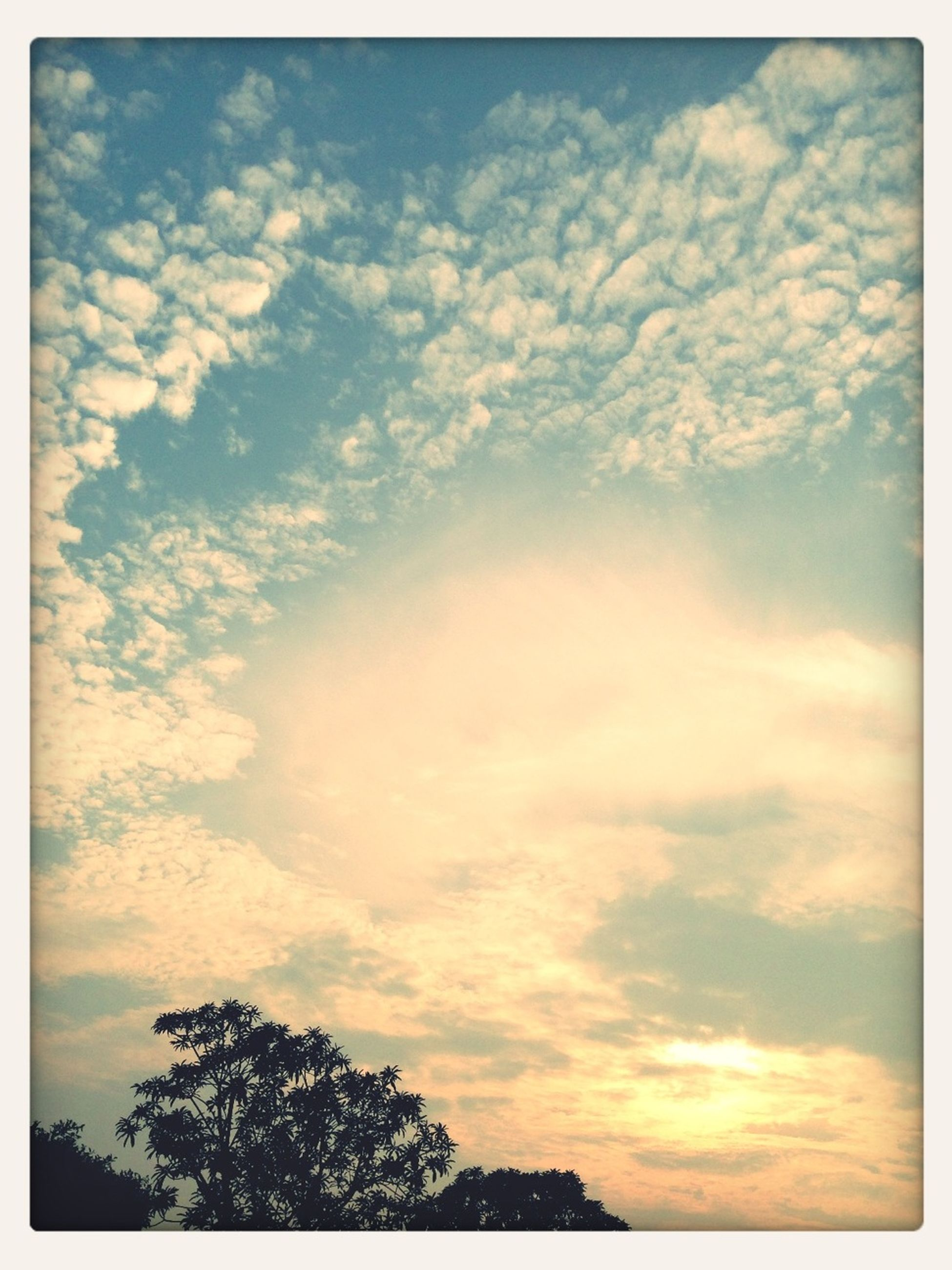 sky, transfer print, low angle view, tree, cloud - sky, tranquility, beauty in nature, scenics, tranquil scene, auto post production filter, silhouette, nature, cloudy, sunset, cloud, idyllic, outdoors, no people, dramatic sky, cloudscape