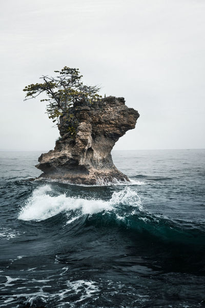 A rough rock formation with a single tree on it by the seashore in Manzanillo, Costa Rica. Rock Rock Formation Rock In The Water Rough Sea Wave Beauty In Nature Dramatic Horizon Over Water Monolith Nature No People Outdoors Rock - Object Rock In The Sea Scenics Sea Single Rock Sky Tranquil Scene Tranquility Tree On A Rockface  Water Waterfront Wave Waves And Rocks