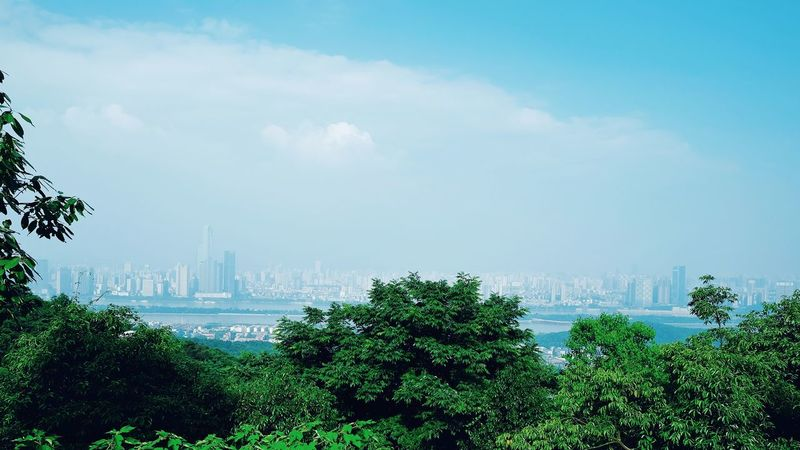 Cloud - Sky Sky City Skyscraper Urban Skyline Outdoors Cityscape Landscape No People Day Fog Beauty In Nature Nature Architecture Changsha, Hunan China View Travel FUJIFILM X-T10 High Angle View Changsha,China Cityscape Travel Destinations City City Life Modern