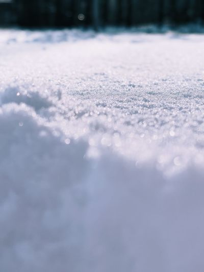 Surface level of snow on land