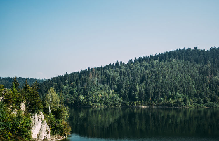 Blue Clear Sky Forest Lake Landscape Nature Niedzica Outdoors Poland Sky Water