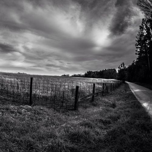 Blackandwhite Landscape Nashville Photoyourworld