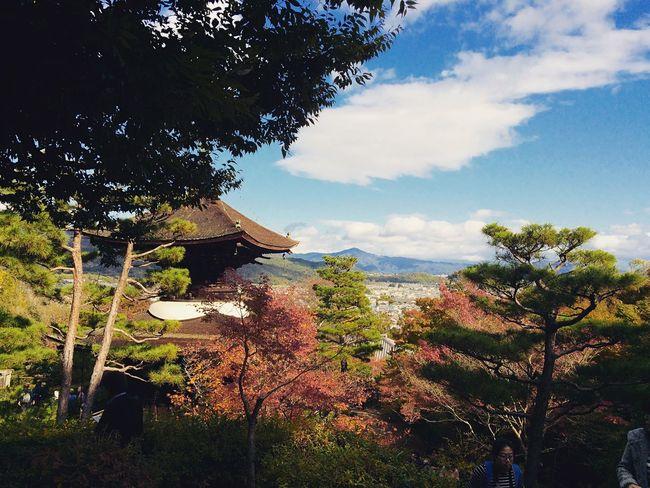 常寂光寺 嵯峨野 京都 Kyoto Autumn Colors Kyoto Autumn Kyototrip Relaxing Hello World Kyoto, Japan Kyototravel 2015  Enjoying Life Autumn