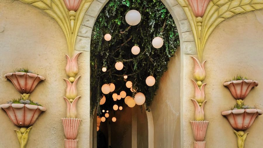 Attraction theme park the Efteling, Kaatsheuvel, the Netherlands. Plant Freshness Food And Drink Indoors  Food Directly Above Nature No People Decoration Variation Close-up Flower Flowering Plant Choice Arrangement Wood - Material Healthy Eating Art And Craft Holiday Creativity
