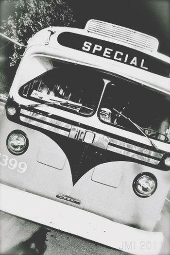 Bus Vintage Special