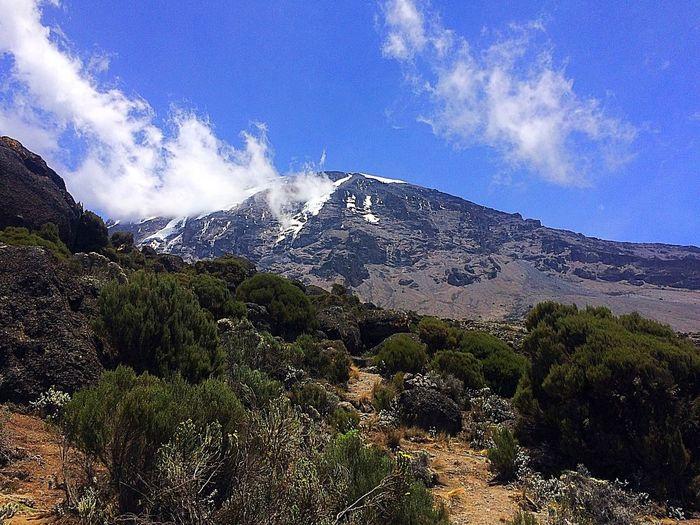 MountKilimanjaro Mountain Photography Kilimanjaro Kilimanjaronationalpark Tanzania Tanzanianationalparks Gadventurestour Gadventures Beauty In Nature Mountains And Sky Mountain View Trekking Beautiful Enjoying The View Outdoor Photography