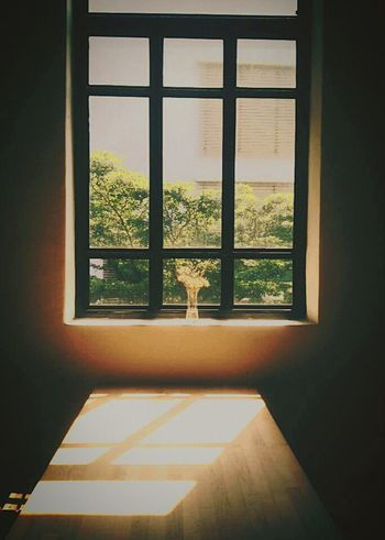 When the sun shines Window Indoors  Tree Sky Day No People Vertical Sun Sunlight Plant Table Wood Light Art