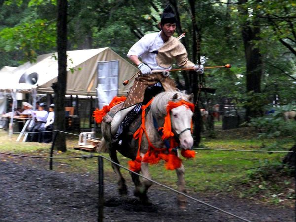 I like this picture, but it's defocused. Yabusame Archery Horse Culture