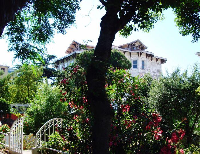 Old Buildings Büyükada Prinkipo Princeislands Istanbul