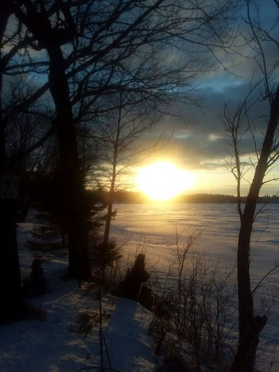 HAPPY WEEKEND FRIENDS 💚🌞💚 ROY LAKE MN SUNRISE TAKEN THIS MORNING Frozen Nature Ice Sunset Tree Sunlight Nature Scenics Sun Reflection Tranquility Outdoors Cloud - Sky Landscape Beauty In Nature Tranquil Scene Sky No People