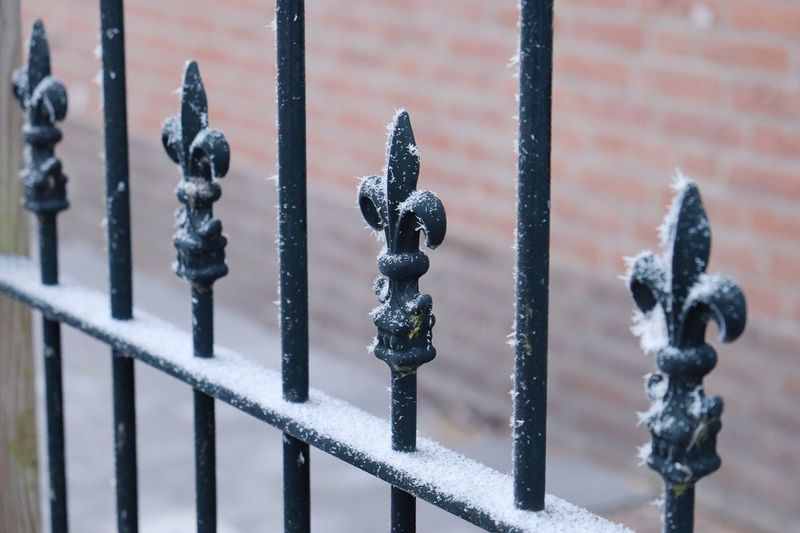 Close-up of frozen metal gate during winter