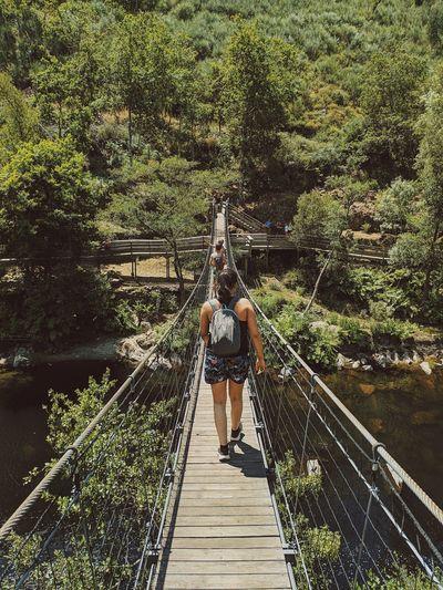 Rear view of women on footbridge in forest