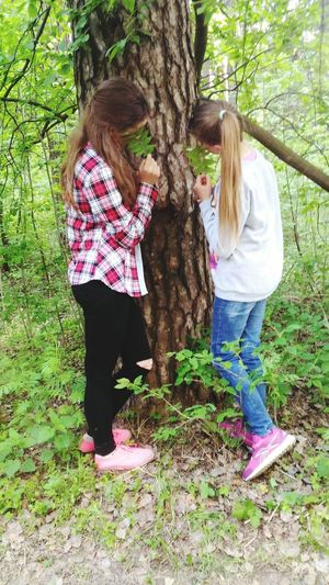 Forest Лес Me девочка Nature девушка Girl Holiday две девушки 2 Girls