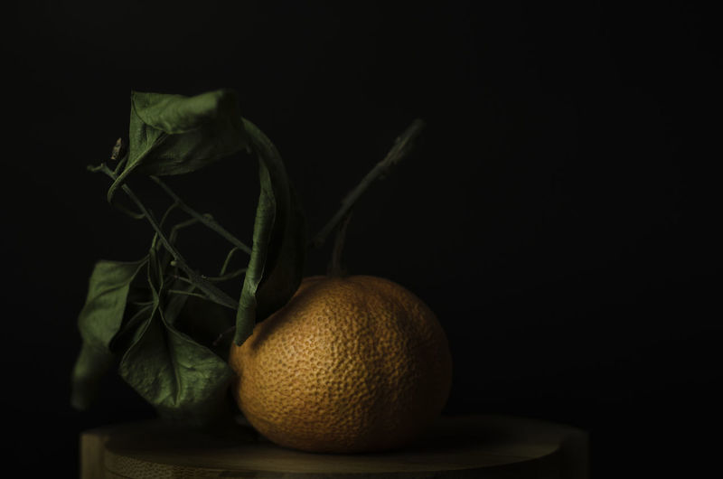 Foodphotography Fruit Light And Shadow Lowkeyphotography No People Orange Photography StillLifePhotography Studio Shot Dark Photography Frutas Y Verduras Close-up Frutas