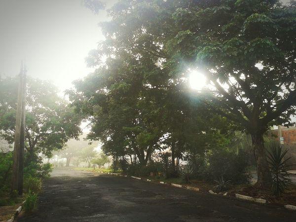Hoje pela manhã, foi bom caminhar, a neblina foi especial, deu um clima diferente e umas visual totalmente inusitado. Keepwalking Morningwalk Nature Smallcitylife Iloveit Beblessed