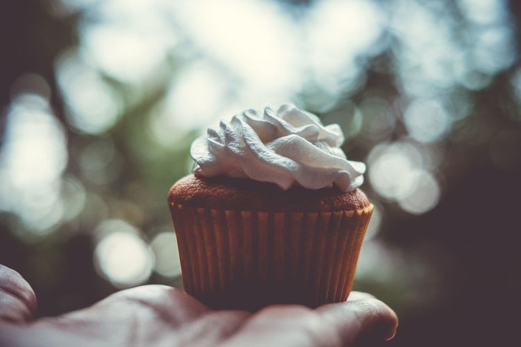 Close-up of hand holding cupcake