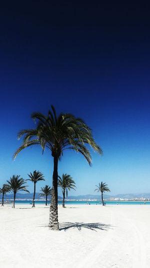 Dedicada a una leonesa que se cachondeaba de que en León tenían mejor tiempo que en Mallorca Jajaja Españoles Y Sus Fotos Mallorca Somosfelices Beach