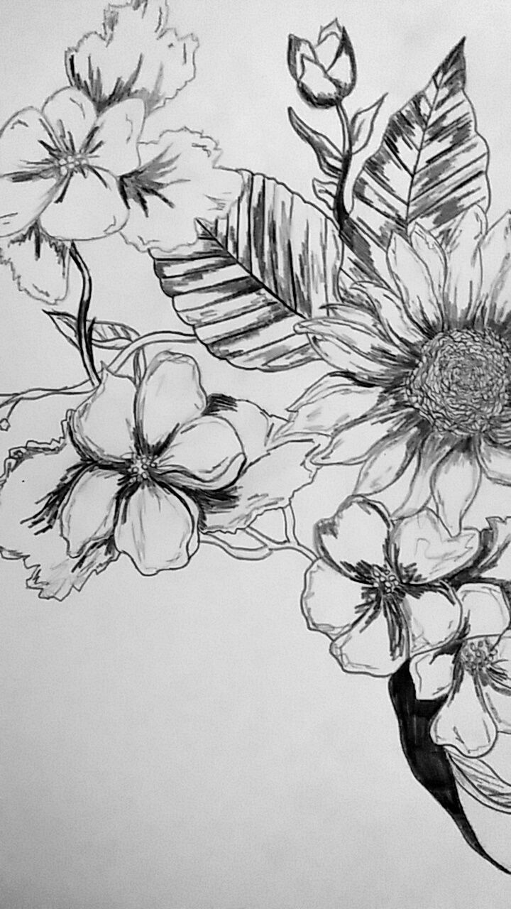 creativity, art and craft, paper, indoors, sketch, no people, table, close-up, studio shot, drawing, white background, pencil drawing, sketch pad, flower, day