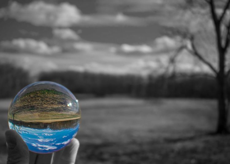 What a Wonderful World Field Blackandwhite Branches Branch Tree Globe Crystal Ball Photography Refraction Crystal Ball Lensball Photography Lensball Lens Ball Focus On Foreground Transparent Sphere Day Bubble Nature Real People Reflection Close-up Holding Outdoors Sky Glass - Material Crystal Ball Hand