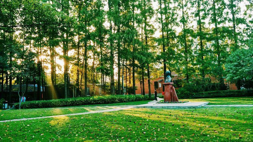 Campus Fudan University Campus Sunlight Photography Running 🏃