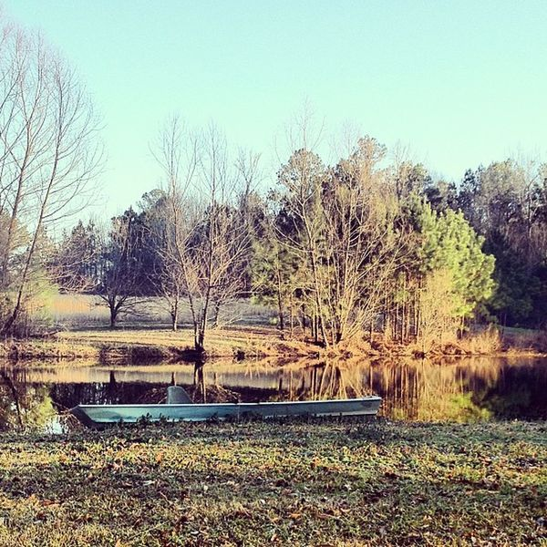 Beauty Nature God Creation Beautiful Winter Mississippi  CountryLivinG