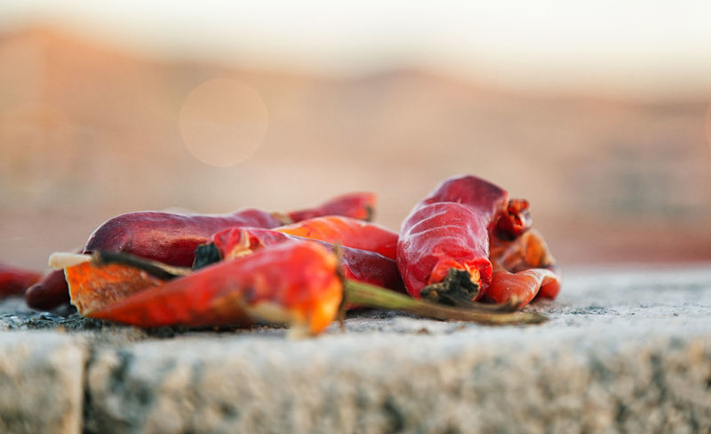 Red Hot Peppers Cayenne Cayenne Pepper Dried Peppers Edible  Food Fresh Peppers Freshness Hot And Spicy Kahramanmaraş Outdoors Red Red Chili Pepper Spicy Turkey Vegetable