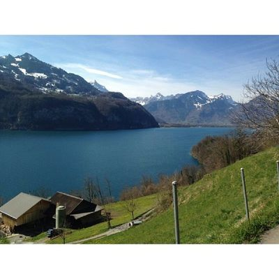 My dearest having a good time facing this view. Oh switzerland, you never fail to make me fall inlove always. Wallensee Swissphotooftheday Switzerland Igerssuisse nature lake beautiful worldunion europe paradise