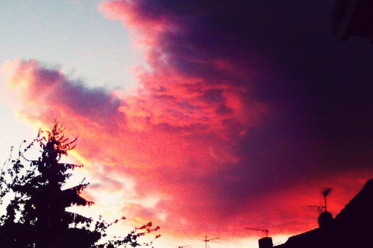 Große rote Wolke ☁ ? Clouds Evening Nature Sky