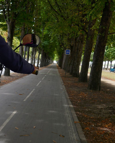 Cyclo Diminishing Perspective Mode Of Transport Outdoors Paris, France  The Way Forward Transportation Tree
