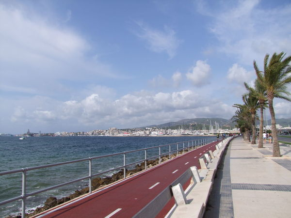 Palma Promenade & Cycle Highway Blue Sky White Clouds City Composition Mallorca Palma Palma De Mallorca Promenade SPAIN Sunlight Capital City Cycle Lane Date Palms Distant View Over Water Fresh Air And Sunshine Nature No People Outdoor Photography Palma Port Railing Ripples In The Water Scenics Sea Toruism Travel Destination Water
