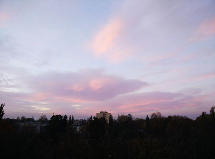 Sky Sunrise Vanila Sky Clouds Sunset Tree Area Multi Colored Dramatic Sky