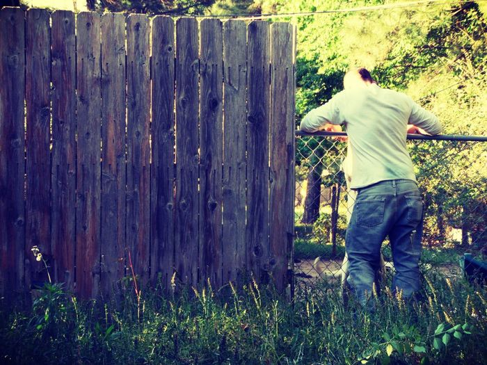 Afternoon Pictures Backyard Photography Fence Leaning One Person Outdoors Standing Uncut Grass Young Adult