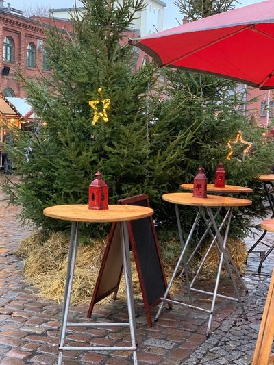 Tree Plant No People Table Nature Christmas christmas tree Day Seat Architecture Decoration Christmas Decoration Built Structure Park Outdoors Holiday Religion Building Exterior Park - Man Made Space
