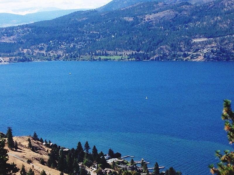 Lake Okanaganlake Sailboat EyeEm Nature Lover Kelowna British Columbia Nature_collection Nature Photography Canada