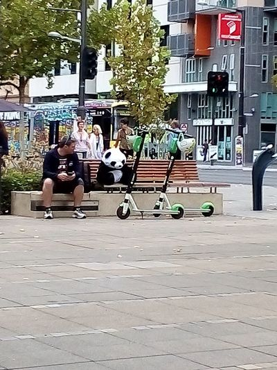 Panda sitting on the bench seat. Adelaide Taking Pictures Animal Themes Lime Scooters 🛴 Lime-S LimeScooters Scooter ElectricScooters🛴 Panda Panda - Animal PANDA ♡♡ Panda Bear Pandabear Pandas Check This Out Taking Photos Adelaide, South Australia Streetphotography Street Electric Scooter Street Photography Sidewalk Full Length Sitting Togetherness Friendship City Life Sidewalk City Street Street Scene
