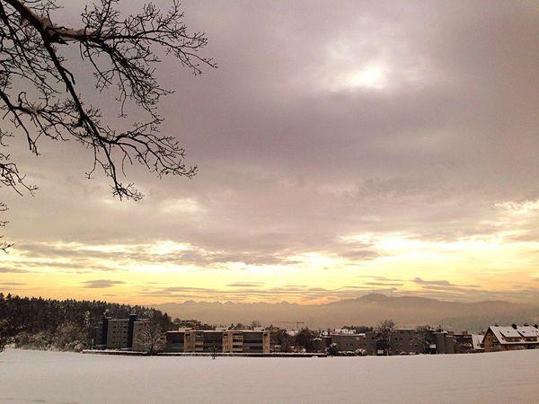 Natur Winter Schnee