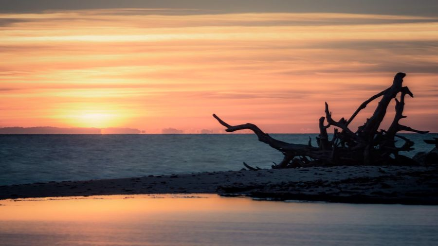 Black Moon Chesapeake Bay Maryland Sunrise EyeEm Best Shots - Sunsets + Sunrise Sky Skyporn Clouds And Sky Beach Water Dramatic Sky Beautiful Nature Nature Sothernmaryland Landscape_photography Landscape Showcase: November