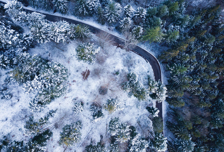 Getting up early, going out, breathing fresh winter air. It's all worth it! Bäume Drone  Luftbild Road Schwarzwald Aerial Aerial Photography Beauty In Nature Day Drohne Forest High Angle View Landscape Motion Nature No People Outdoors Scenics Strawberry Straße Tree Wald Water Waterfall Winter