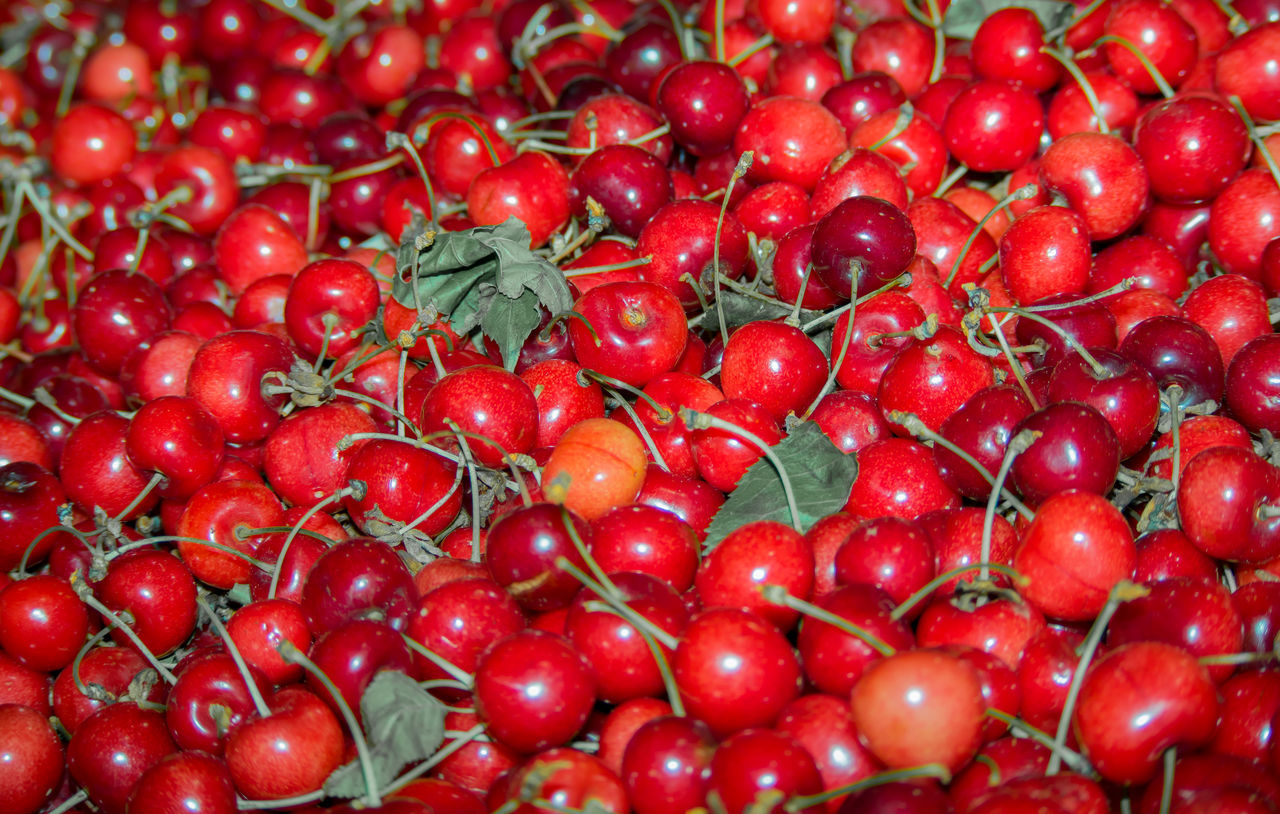 red, freshness, full frame, food and drink, food, backgrounds, fruit, abundance, no people, close-up, healthy eating, day, outdoors, nature
