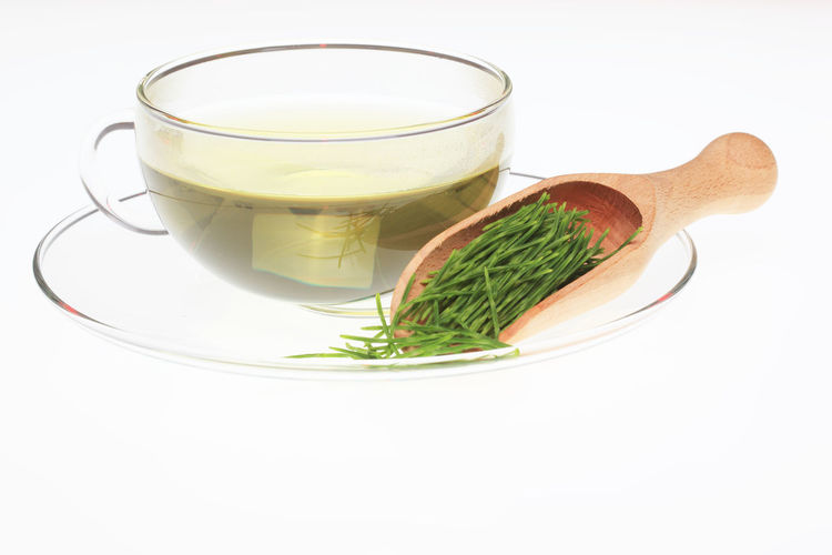 medicinal tea made of common horsetail, Equisetum arvense, field horsetail Equisetum Arvense Herb Horsetail Tea Close-up Common Horsetail Crockery Cut Out Drink Food Food And Drink Freshness Glass Healthy Eating Herb Herbtea Household Equipment Indoors  Kitchen Utensil Medicinal Plant Medicinal Tea No People Refreshment Spoon Studio Shot Tea Tea Cup Vegetable Wellbeing White Background