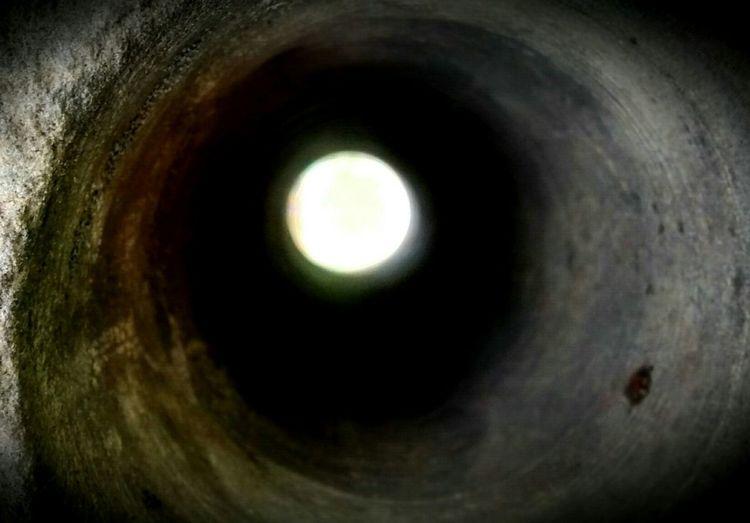 Ojo De Aguila Mirando A La Luna Naturaleza Muerta Arte Minimalista Texturas Y Colores Obra De Arte Artistic Photography Arte En Foco Q Arteemfoco Eye4photography  Conceptual Photography  Salvaje Una Mirada A La Luna Composition El Tunel Ernesto Sabato El Tunel El Tunel Del Tiempo Eagle Eye Moon La Luna UNO