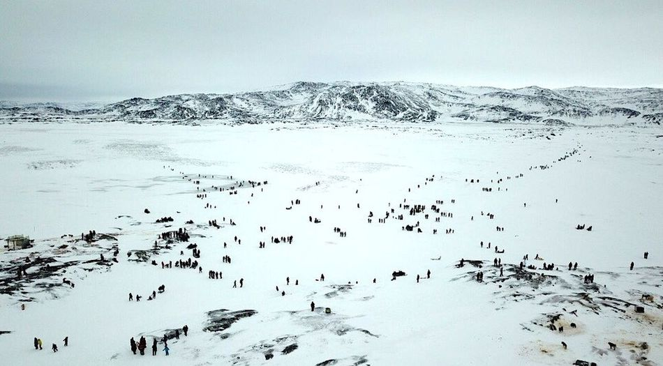 The dogsled race competition is a crowd puller. Ilulissat The Real Greenland This Is Greenland Cold Temperature Day Dogsled Race High Angle View Landscape Mountain Nature Outdoors Sky Snow Winter