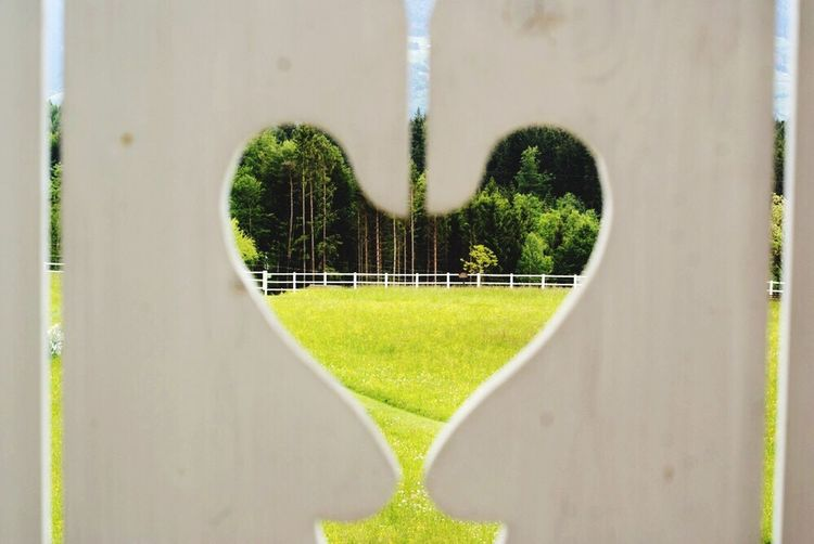 No People Green Color Grass Alps Heart Paling Railing