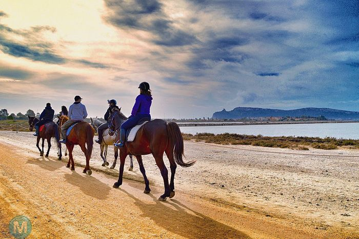 Riding around the town Horse Cloud - Sky See The World Through My Eyes Cagliari That's Me Check This Out Loveit Emotions Nature Amazing View Mylife Nikon Taking Photos Lifestyles Sardinia