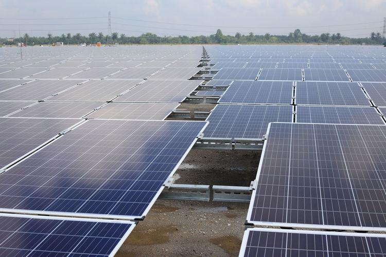 large scale solar farm