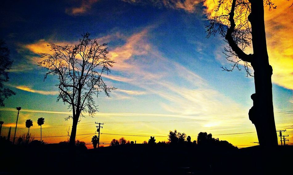 A beautiful sunset outside my window.. Peaceful The View From Here Beauty Photography LoveMyWork Blue Sunset Beautiful