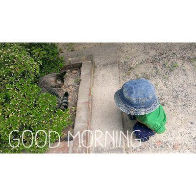 おはようございます☀ 今朝も気持ちのいい朝です。 * picは昨日出会ったネコちゃんと◎ * 今週も頑張っていきます! よろしくお願いします……♩♩ 1歳11ヶ月 23ヶ月 1歳 息子 男の子子供ig_kidskid_stagram kidsstagram ig_oyabakabuig_beautiful_kidsloves_kids 猫ねこノラ