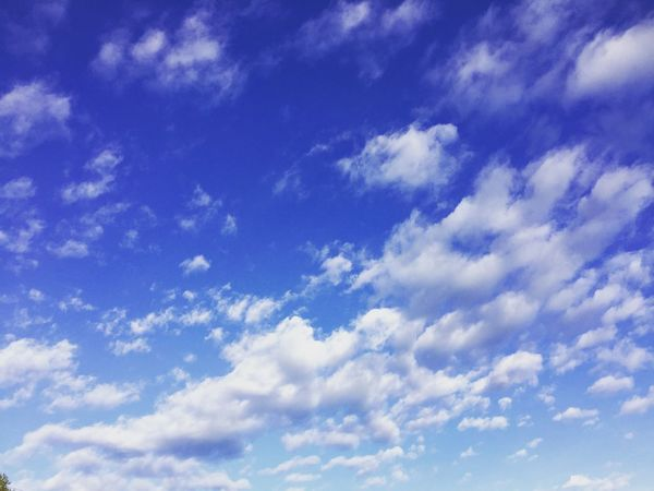 Sky Cloud - Sky Sky Beauty In Nature Blue Low Angle View Scenics - Nature Tranquility