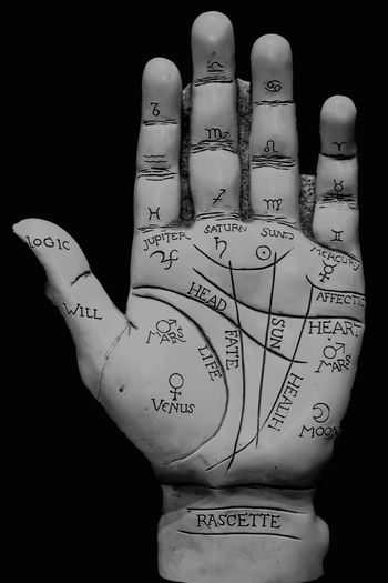 Hand Palm Palmistry Mystic Thumb Finger Check This Out